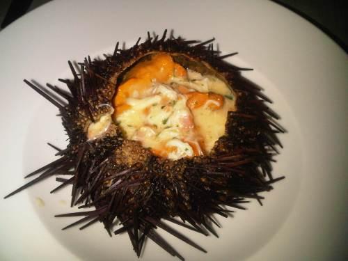 Warm Sea Urchin Anchor & Hope SF